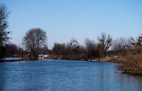Днём река выглядит потрясающе