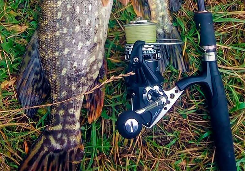 Kastking Blade обратный конус фото